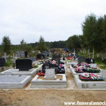 2009_kov(9)